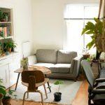 Kvalitetno čiščenje stanovanja s profesionalnimi čistili